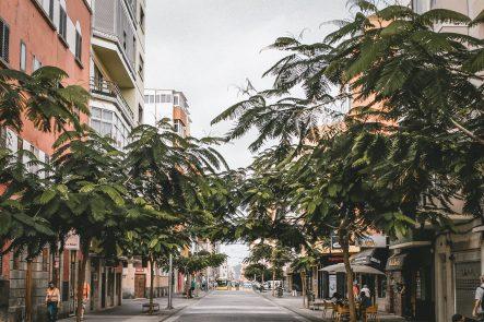 Asociación zona Mesa y López ambientes